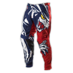 Troy Lee GP Predator Pant Youth 2013